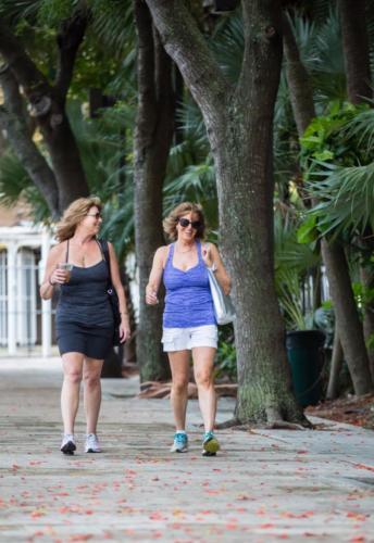 Miami Paradise -360